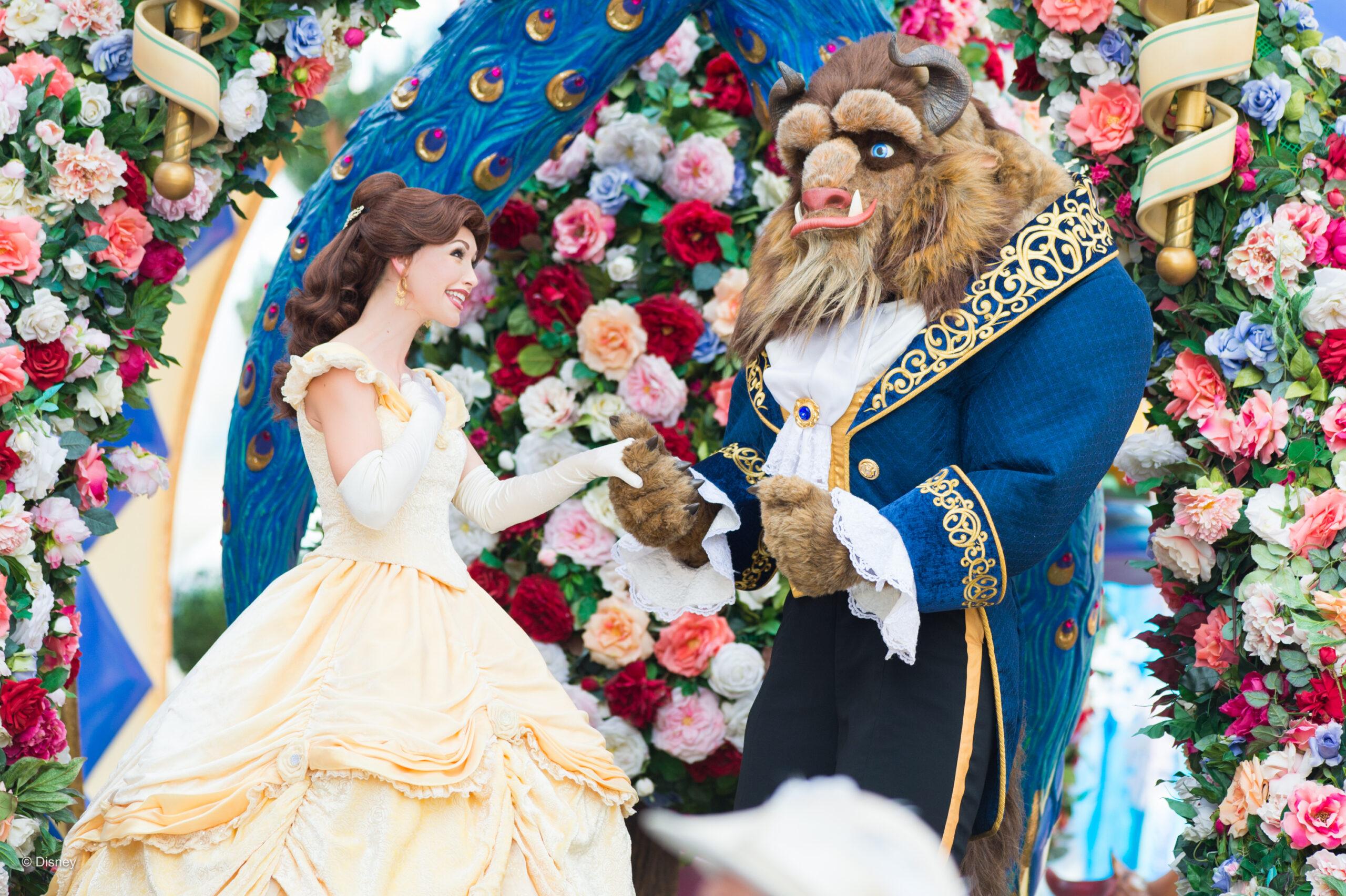 Vacation Planning Travel Agents - Magic Kingdom Walt Disney World